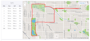 Brisk run for marathon training